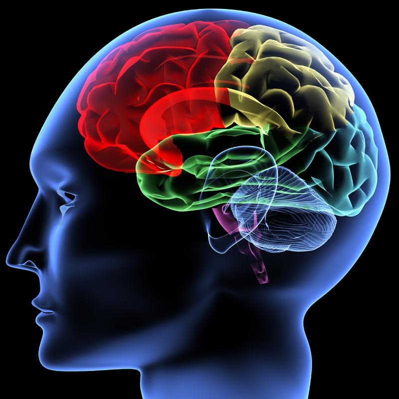 Employers want emotional intelligence